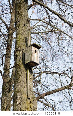 树上的木制鸟笼