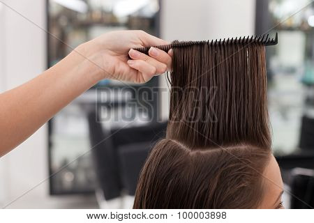Cheerful young hairdresser is combing her client