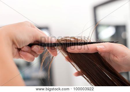 Professional young hairstylist is serving her customer