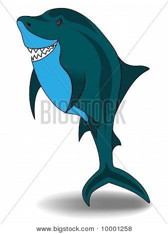 Small Shark