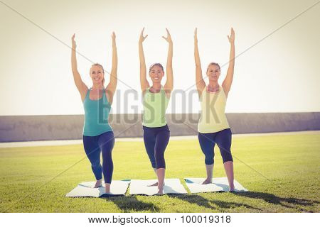 Smiling sporty women doing yoga together in parkland