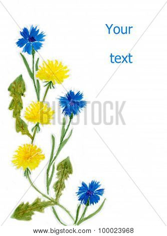 dandelions and cornflowers