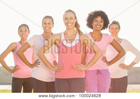 Portrait of smiling women wearing pink for breast cancer and posing in parkland