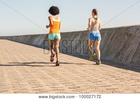 Rear view of two young women jogging together at promenade