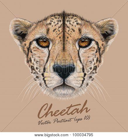 Vector Illustrative Portrait of a Cheetah