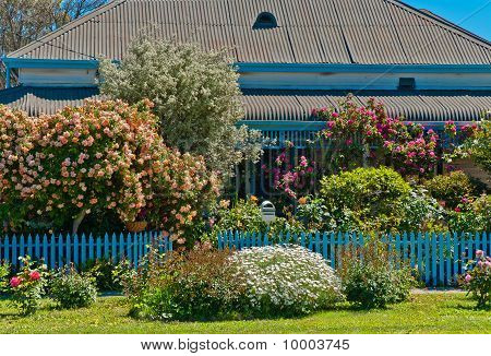 Blue Picket Fenced Cottage and Garden