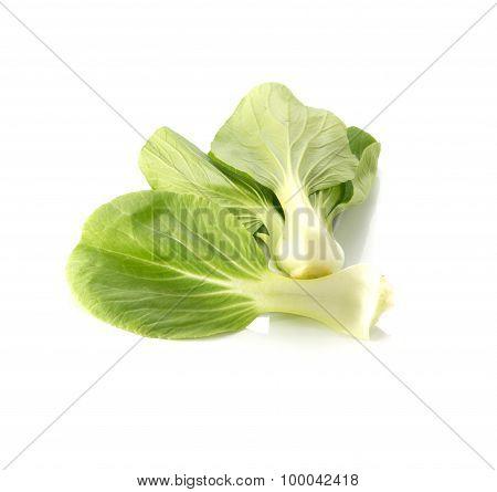 Turnip Greens On White Background.