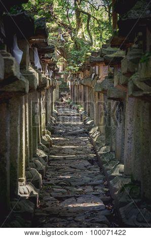 Stone Lamp At Kasuga Taisha In Nara, Japan