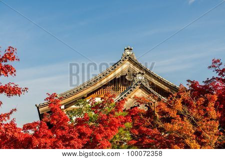 Autumn Foliage In Eikando Temple, Kyoto, Japan