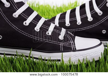 Shoes Closeup On Green Grass
