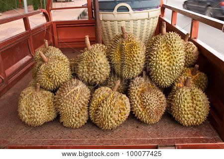 Durian Fruit, Thai