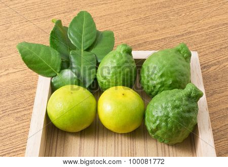 Fresh Kaffir Lime With Lemon Lime On Tray