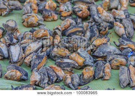 Dried Abalone For Sale