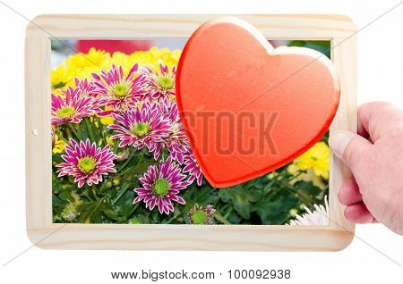 Chalkboard With Flower And Heart