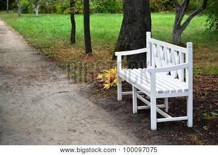 White Wooden Bench In The Park In Autumn On A Background Of Yellow Leaves And Track