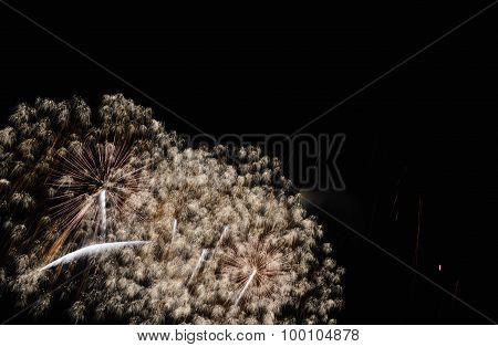 celebrated fireworks in the dark sky