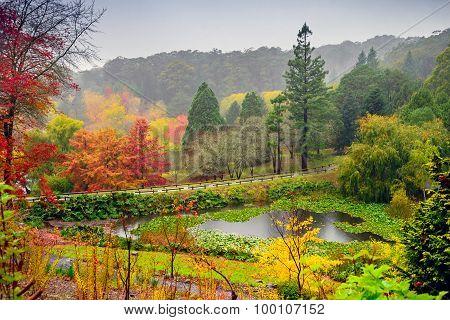 Autumn Landscape Under The Rain