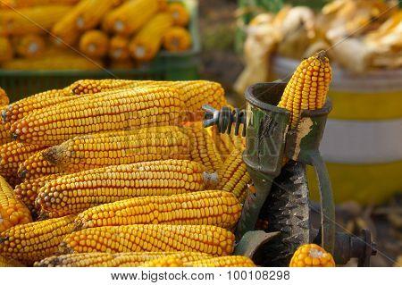Corn processing