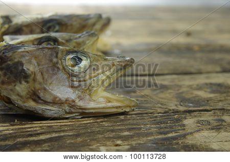 Dry Cod Fish