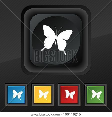 Butterfly Icon Symbol. Set Of Five Colorful, Stylish Buttons On Black Texture For Your Design. Vecto