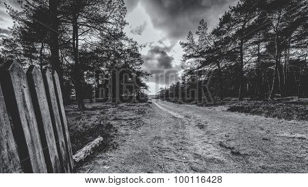 Dirt Road With A Wooden Gate In A Rural Landscape.