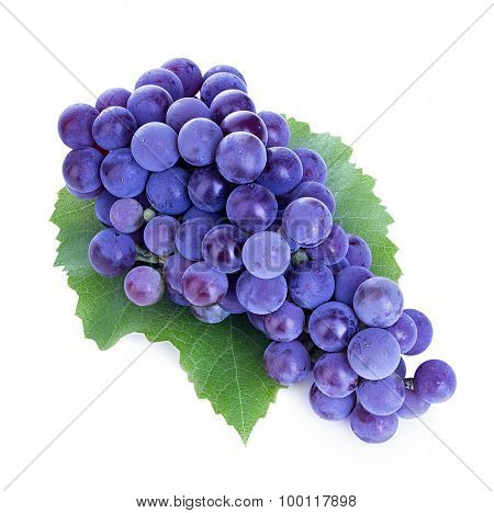 Grapes Isolated On White Background