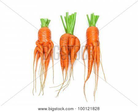 Irregularly Shaped Carrots Close-up Isolated On White Background