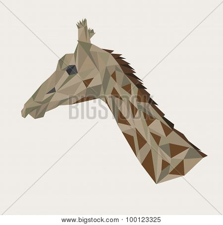 head of giraffe.