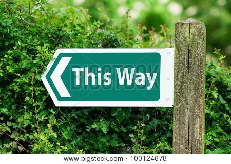 Direction Arrow, Sign To This Way In Green Color