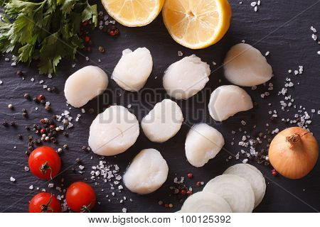 Raw Scallops And Ingredients For Cooking Close-up. Horizontal Top View