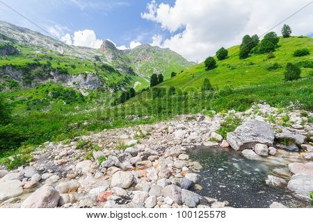 Brook In The North Caucasus.