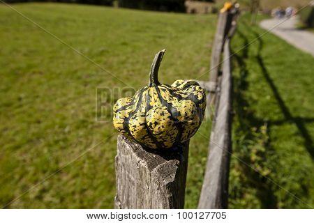 Pasture Fence Post Jewelry I