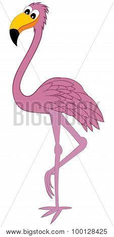 Funny Cartoon Flamingo