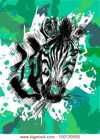 Vector Zebra In Eps