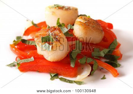 Fried Scallops With Red Pepper Close-up On A Plate. Horizontal