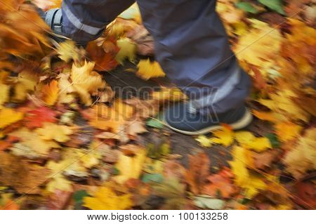 legs of a child walking on the leaves
