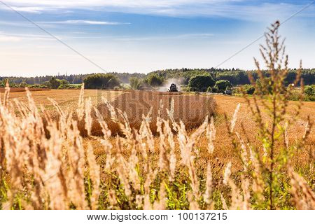 Natural Autumn Rural Background - The Grain Combine Reaps A Crop From A Field.