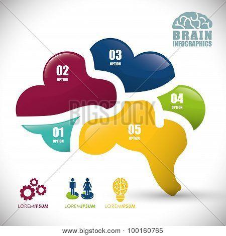 Human brain design.