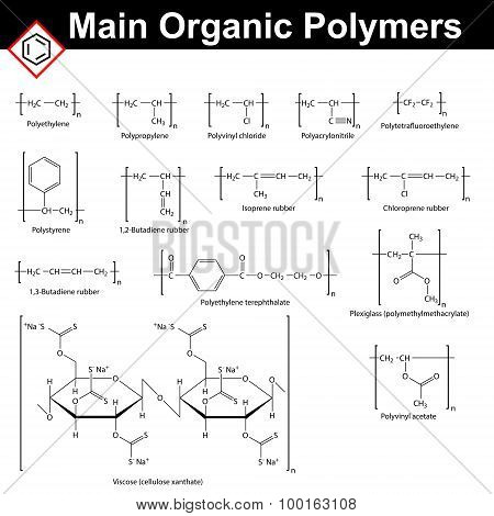 Main Organic Polymers