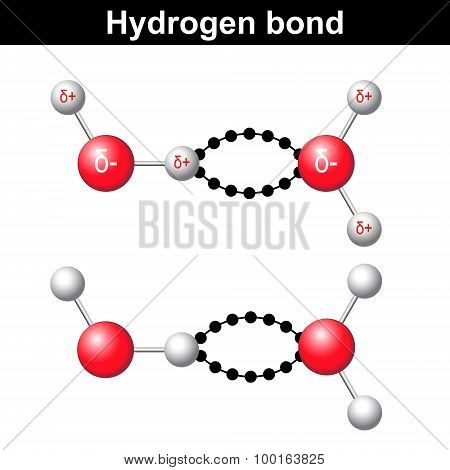 Hydrogen Bond, Chemical Ionic Interaction