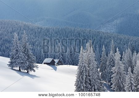 Fabulous house in a mountain forest. Winter landscape. Christmas view. Carpathians, Ukraine, Europe