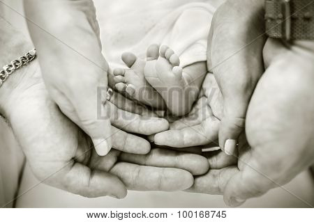 Parents Holding Baby Feet In Their Hands