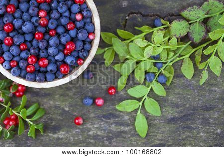 Bowl Of Blueberries And Cranberries