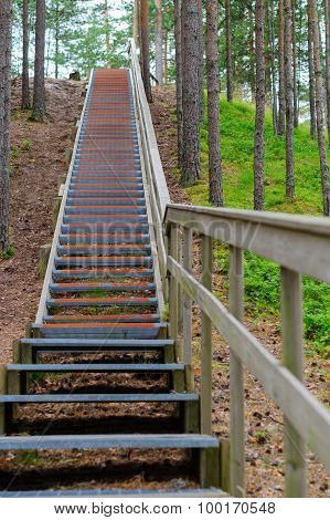 Upward Stairway With Railing In Coniferous Wood, Part Of Hiking Trail