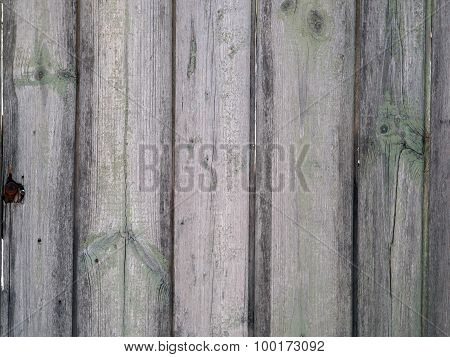 Fragment Of Old Wooden Fence