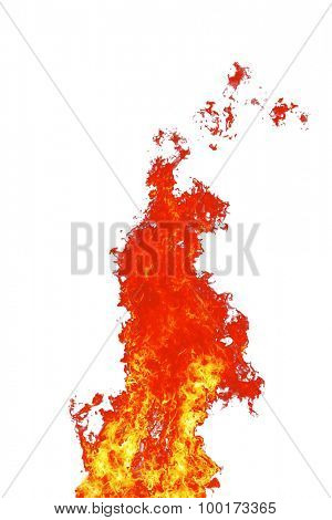 red wild fire on white background