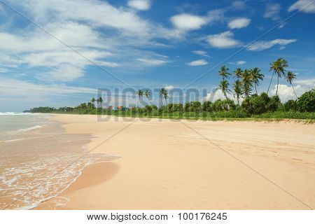 beautiful coastline and blue sky