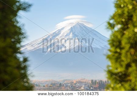 Mount Fuji And Green Tree Foreground At Kawaguchiko Japan