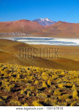 Laguna Morejon in Cordillera de Lipez