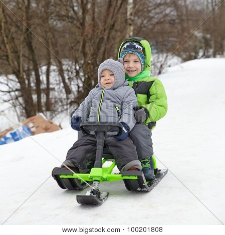 Cute brothers on sleigh